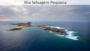 Sailing Selvagens Desertas - Golden Sail Madeira